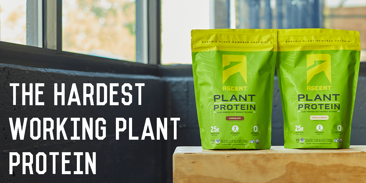New Ascent Organic, Plant-Based Protein Powder