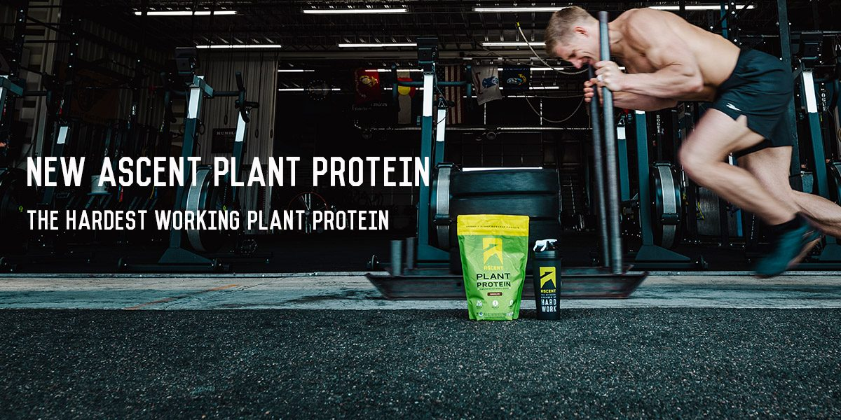 """""""This is the Best Plant Protein I've Ever Tried"""""""
